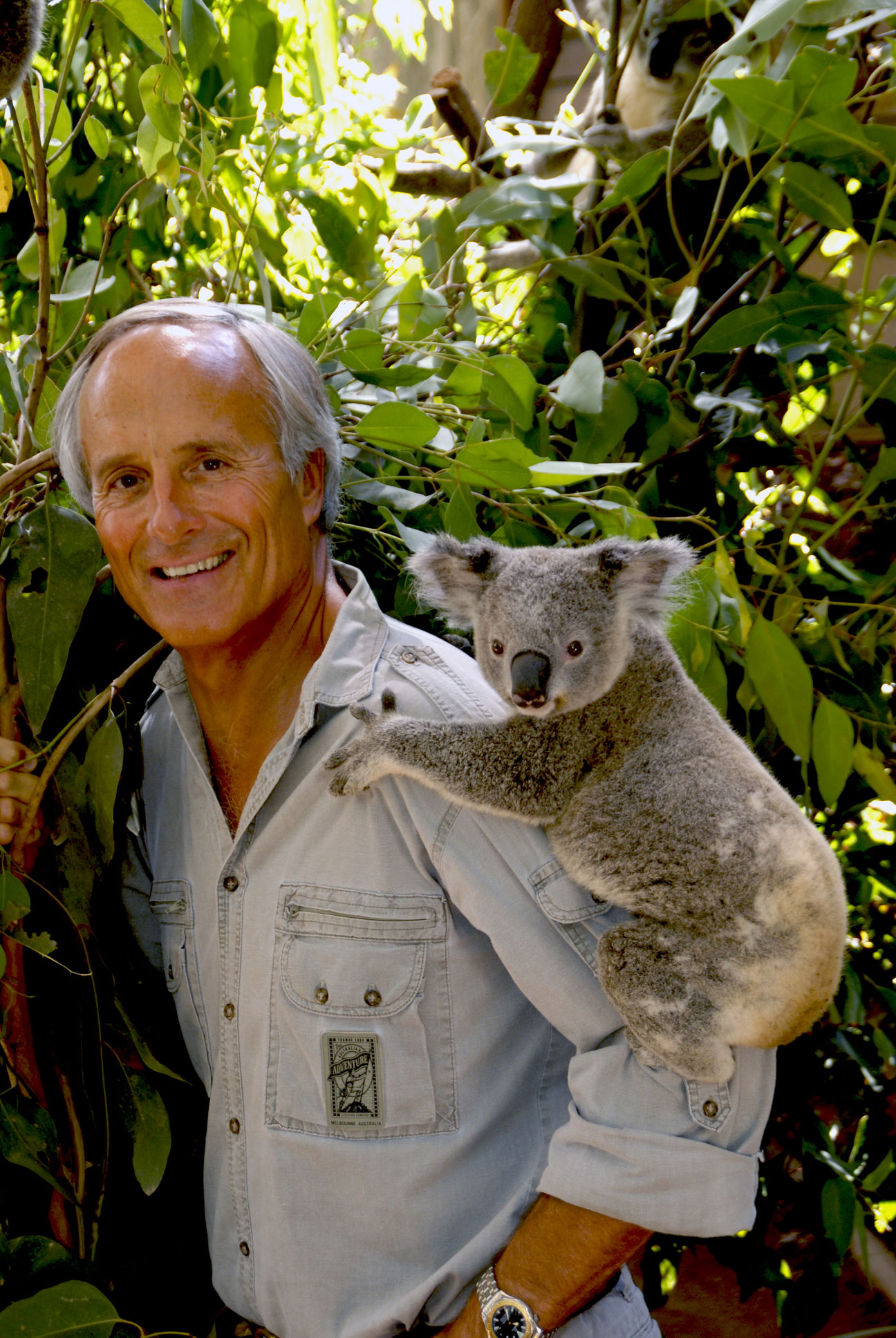 /_uploaded_files/jack-hanna_with_baby_koala_new-2.jpg